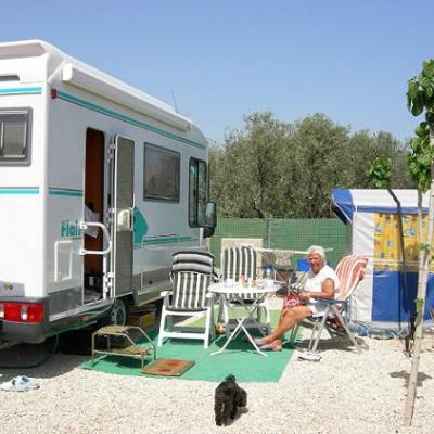 Camping el jard n con opiniones campello alicante for Camping el jardin